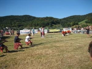 pic 2009 team-tugowar 03